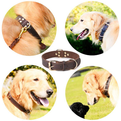 Dog Collar Genuine Leather Alloy Hardware Double D-Ring