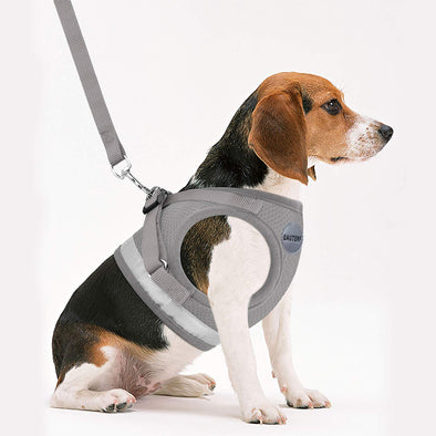 Adjustable Reflective Harness with Leash Dog Jacket