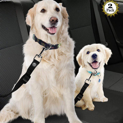 Car Seat Safe Belts for Dog 2 Pack