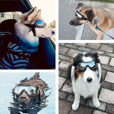 Dog Sunglasses & Goggles with Adjustable Strap