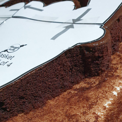 Image of the cut cake using our baking template as a guide