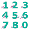 PRINT AT HOME - Set of 9 Number Cookie Cake Templates