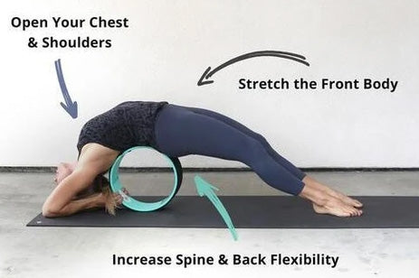 back stretching wheel