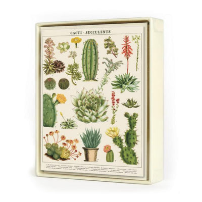 Succulents Assorted Boxed Notecards