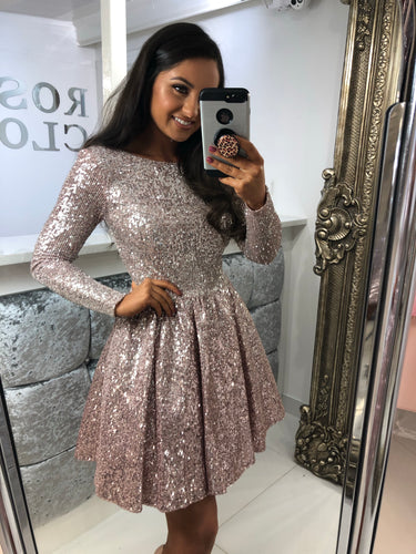 Long Sleeve Pink & Silver Sequin Mini Skater Dress