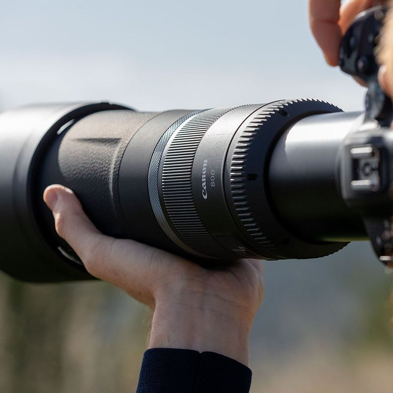 CANON RF 800mm f/11,0IS STM