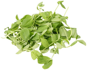 Snow Pea Shoots (100g)