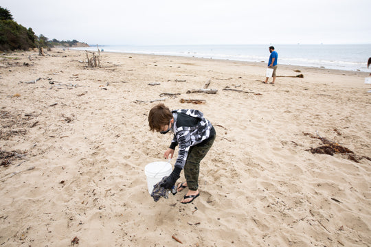 Check out past Beach Clean Ups