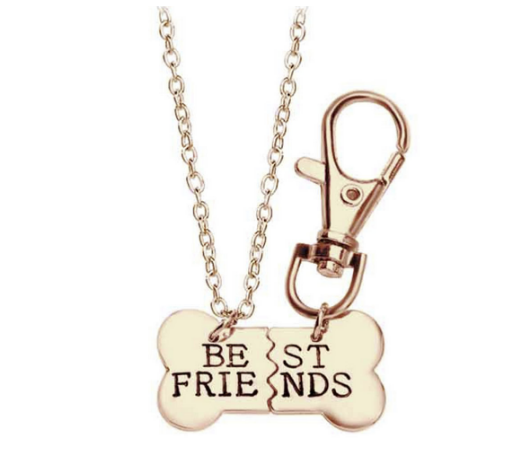 Best Friends necklace and tag set for furry friends (dog tag)