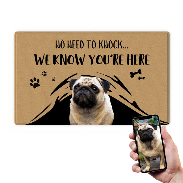 Custom Pet Funny Doormat-No Need To Knock With Your Pet's Photo