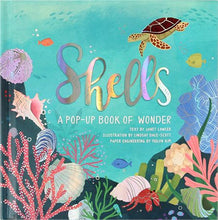 Load image into Gallery viewer, Shells: A Pop-up Book of Wonder