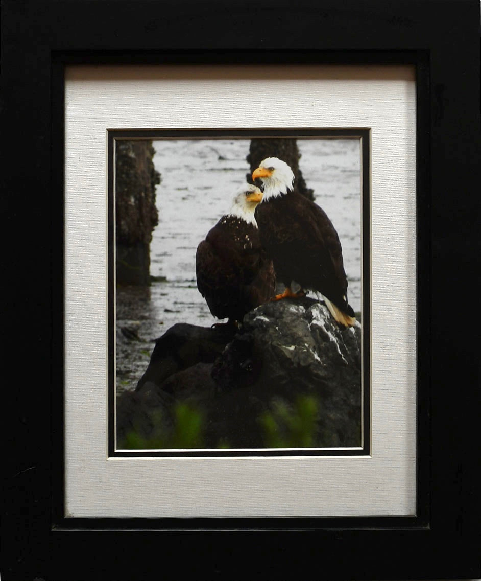 Two Eagles on the Rocks