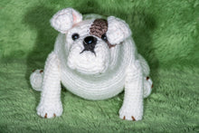 Load image into Gallery viewer, Crocheted Bulldog - Adopt a Critter!