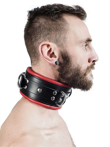 Padded Slave Collar (4887303094410)