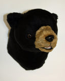 Harry - Small Black Bear