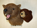 Lou - X-Large Grizzly Bear - Fairgame Wildlife