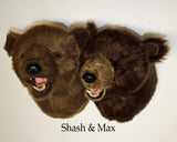 Shash - Large Kodiak Bear