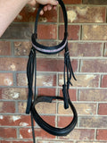 Black collegiate Bridle cob
