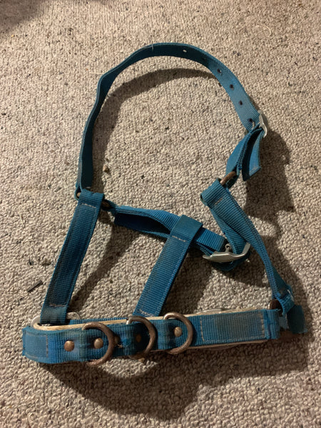 Pony Lunging halter