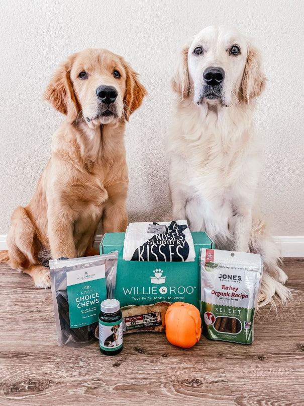 Health-and-wellness-dog-subscription-box-willie-and-roo-vitamin-subscriptions-for-dogs