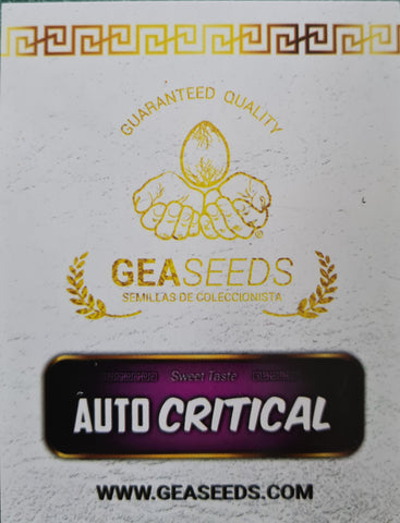 AUTO CRITICAL GEA SEEDS