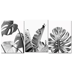 Black White Tropical Leaves