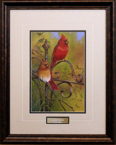 Cynthie Fisher Framed Cardinal Songbird Picture GARDEN VISITORS