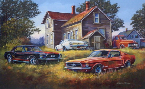 Dale Klee BackYard Mustangs