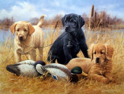 James Killen Faithful Friends-Puppies