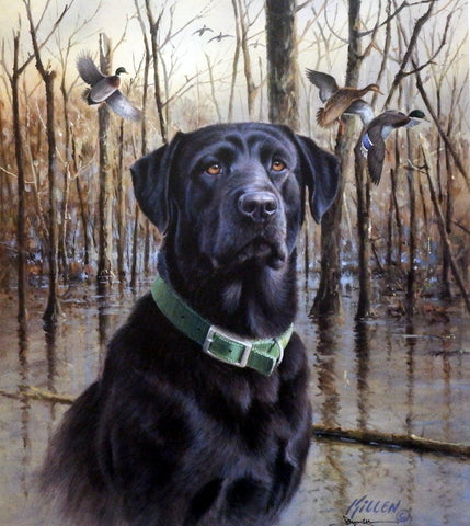James Killen Great Retrievers-Black Labrador-Mallards