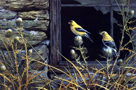 Don Moore Autumn Aristocrats Birds