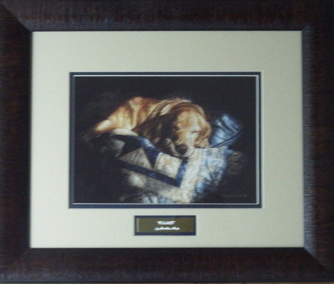 Sueellen Ross Snooze-Framed