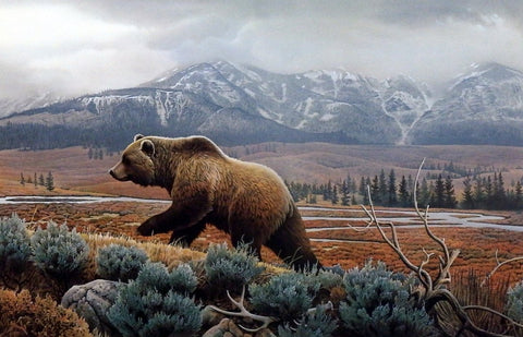 Jerry Gadamus Yellowstone Mist-Grizzly