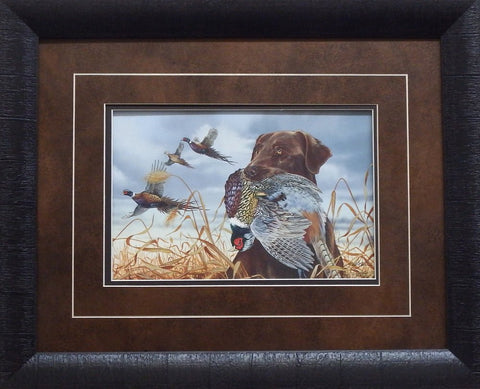 Scot Storm Field Companions Chocolate Lab-Framed
