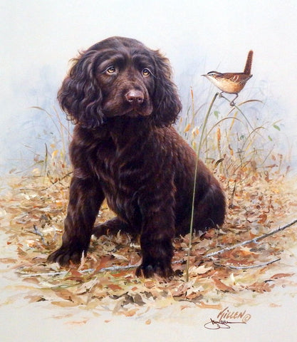 James Killen Pride and Joy Boykin Spaniel-Signed