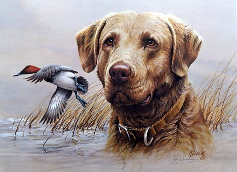 James Killen Cheaspeake-Canvasback S/N A/P Print