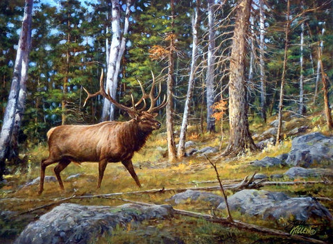 James Killen Deep Woods Monarch-Elk-Signed