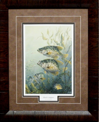 Terry Doughty Black Crappies-Framed