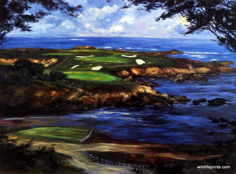 Michael Schofield 16th at Cypress Point