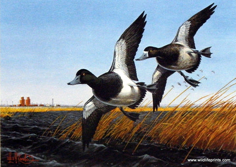 Les Kouba 1985 North Dakota Duck Stamp