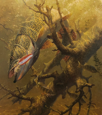Susinno Hung Up Northern Pike S/N (18x20)
