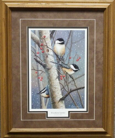 Cynthie Fisher Woodland Sprites Art Print Framed 17 x 21