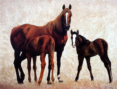 "Diana Beach ""Company for Dinner"" Horse and Colt Print"