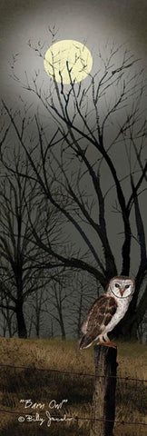 Billy Jacobs Barn Owl Art Print 12x36
