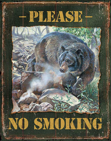 Please No Smoking Tin Sign