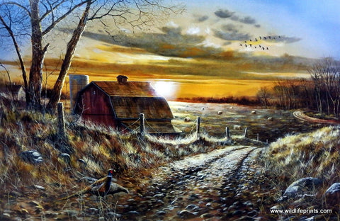 Jim Hansel A Road Less Traveled