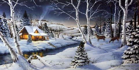 Mark Daehlin A Winters Night