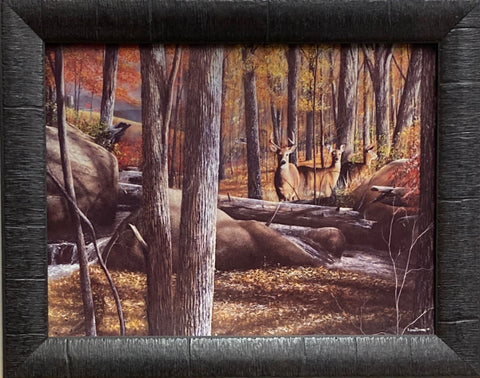 Kevin Daniel Autumn Alert Deer Doe Art Print-Framed