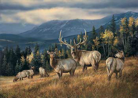 Rosemary Millette Autumn Gold A/P Elk Print