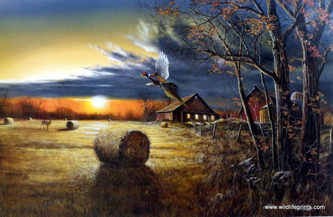 Jim Hansel Autumn Harvest